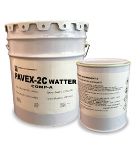 Water epoxy paint kit