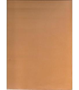 Albero microcement color