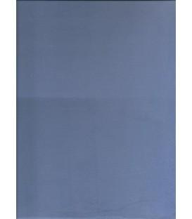 Color Blue E microcement