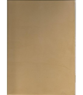 Color Light brown micro cement