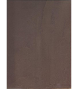 Color Microcement Purple