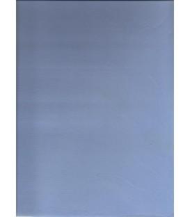 Color Light blue micro cement