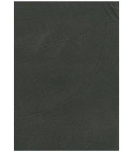Ash color pantone 405C microcement
