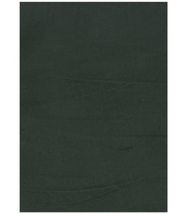 Color Slate pantone 7540CP microcement