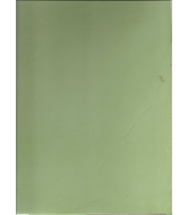Green color microcement english